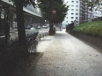 20070930ginnan1