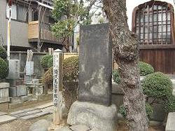 20070217yanaka6
