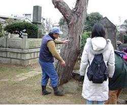20070220tokugawa3