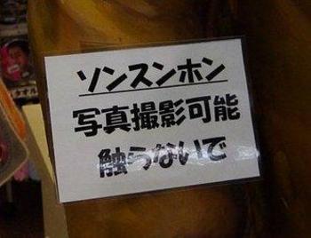 200706019yonsama4