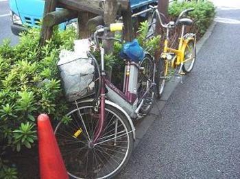 20080122nigiyaka3
