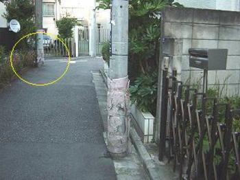 20080124inuyoke5