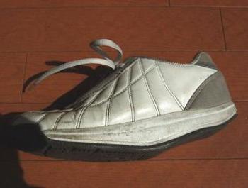 20080330shoes1