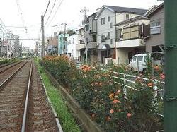 710machiyasenro